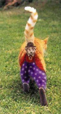 Holloween charlie chaplin butt cat