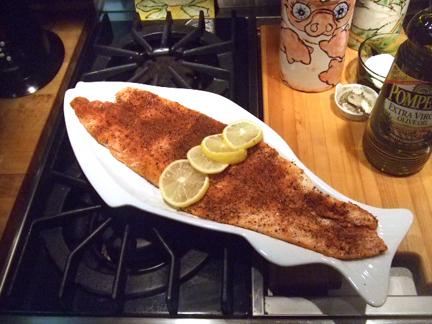 Salmon from Ellen_72