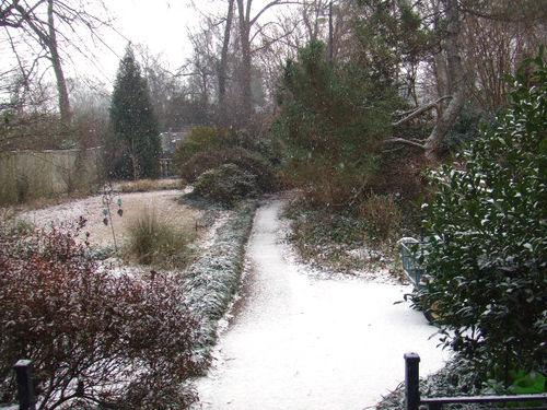 Snow backyard072_ret