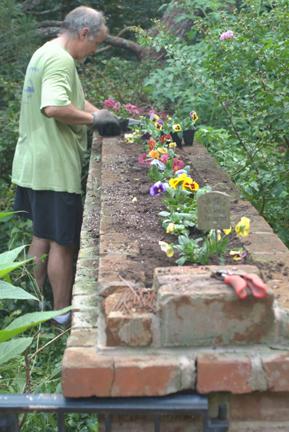 Flowers Hud planting pansies 79_LR