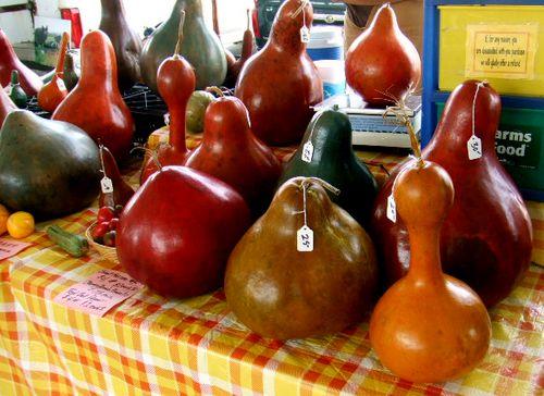 Farmer's market gourds