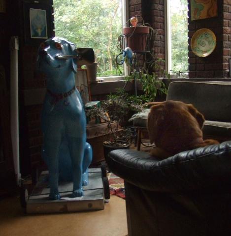 Zoe talking to buddy dog