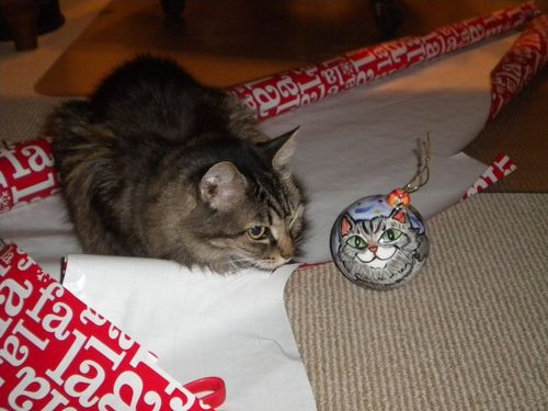 Christmas 2010 cat with her ball.