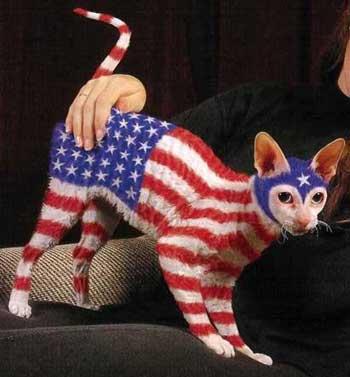 Americat